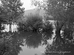 giverny-photos,photographe,amateur,27,eure,photos,Claude Monet,impressionnistes,village,givernois,giverny,photographe,amateur,27,eure,Claude Monet,impressionnistes,village,givernois,
